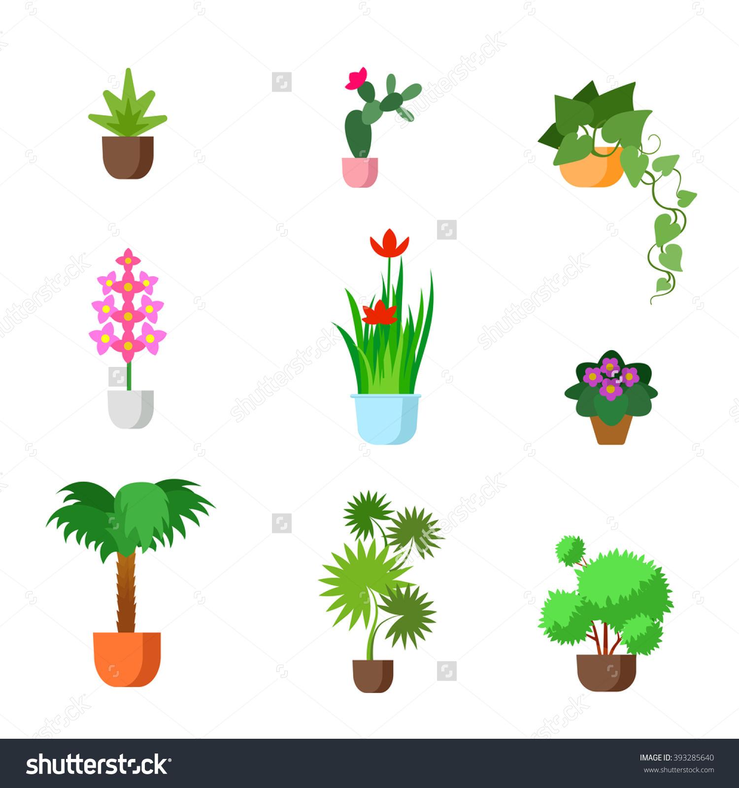 Plants Indoor Room Houseplants Vector Flat Stock Vector 393285640.