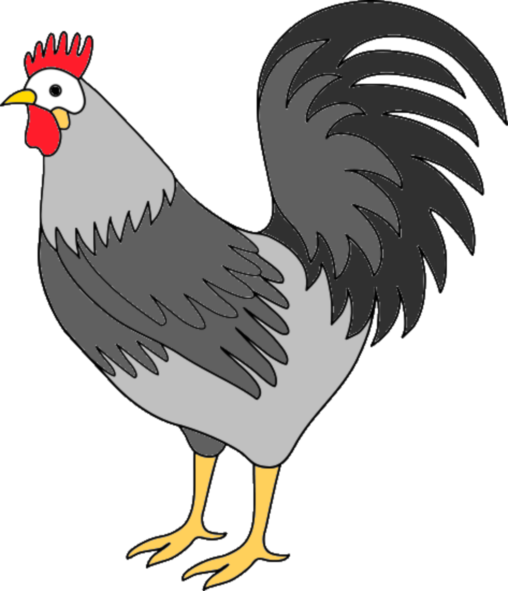 Free photo: Rooster clipart.