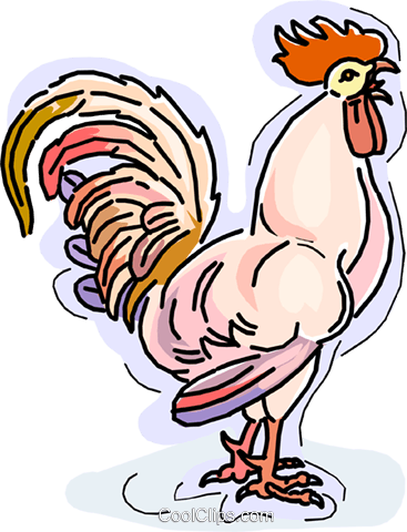 Rooster crowing Royalty Free Vector Clip Art illustration.