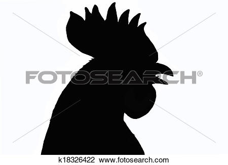 rooster head outline clipart - Clipground