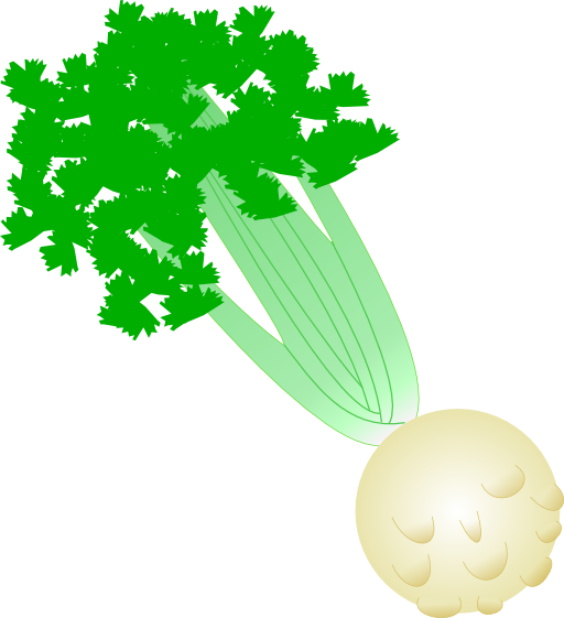 Celery With Root Clipart Royalty Free Public Domain.