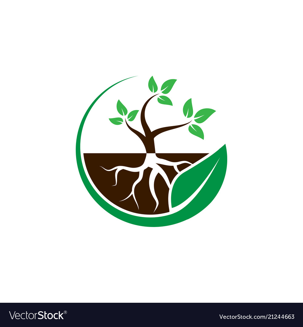 Plant with root in a circle leaf logo design.