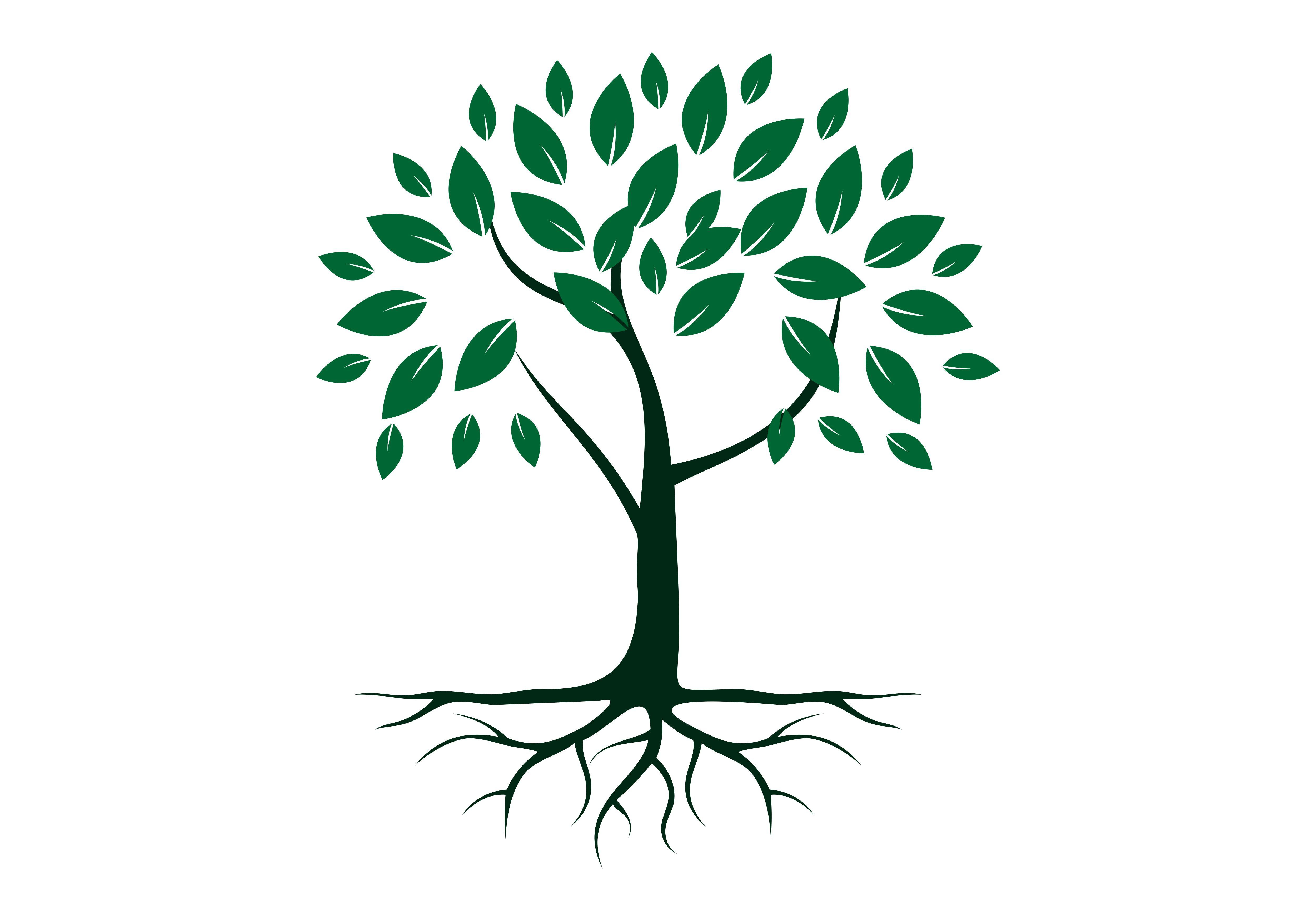 Tree root logo.