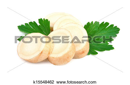 Stock Photo of parsley root k15548462.