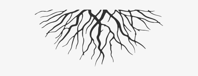 Roots Png.