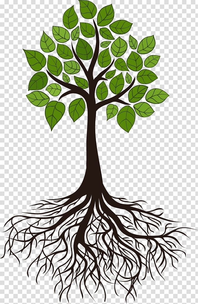 Green leaf tree digital illustration, Tree Root Branch.