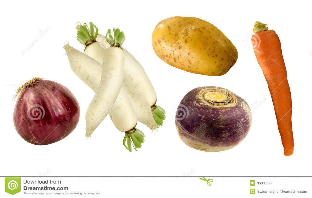 Healthy Root Vegetables Royalty Free Stock Images.