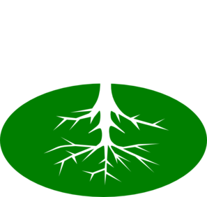Rooted clipart.