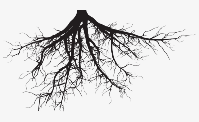 Soil And Roots Png Clipart Black And White Download.