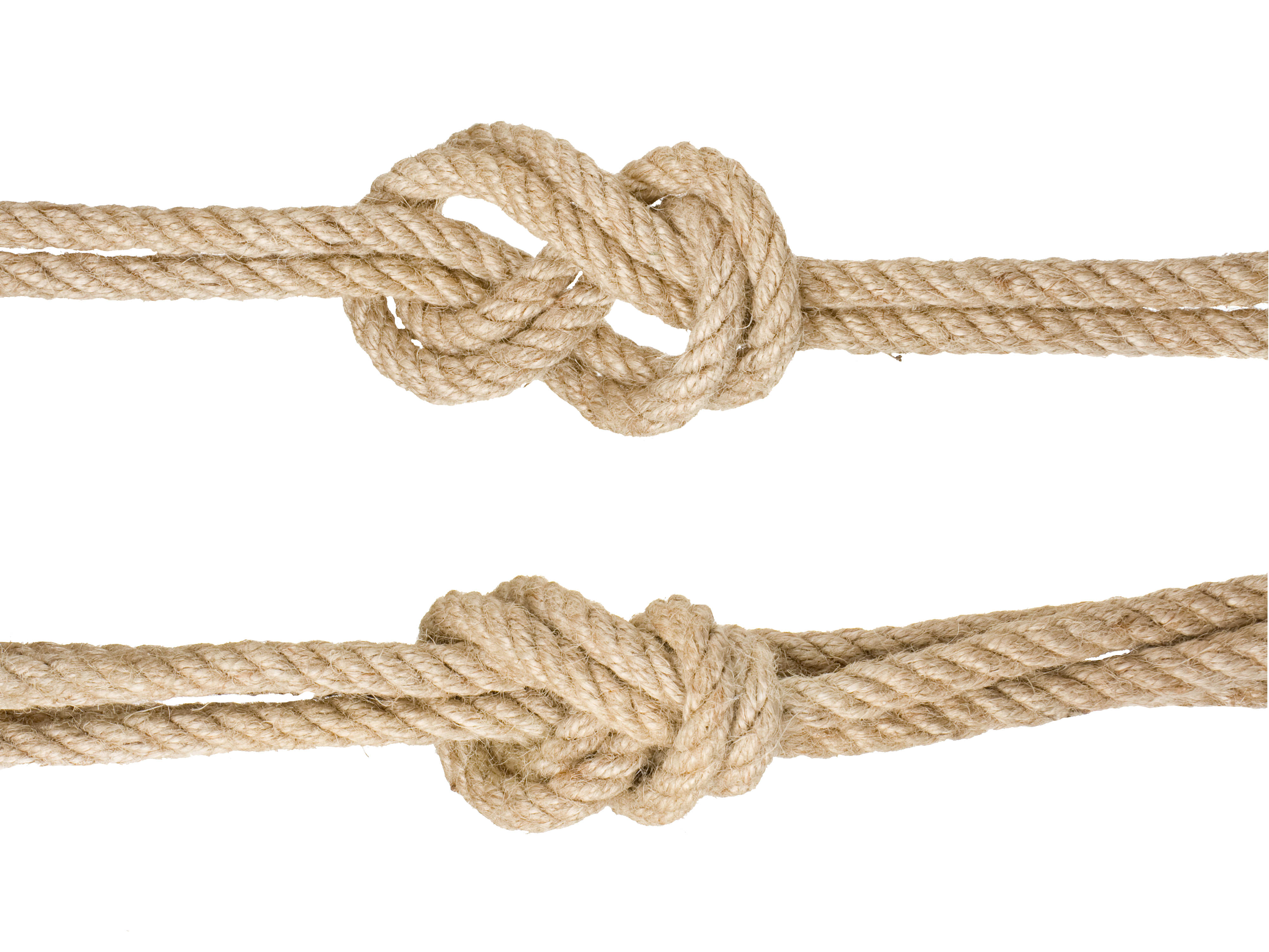 Download Google Knotted Rope Knot Images Hemp HQ PNG Image.