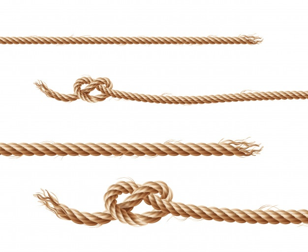 Rope Vectors, Photos and PSD files.
