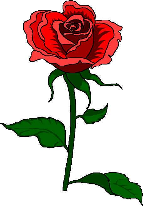 Rosa clipart.