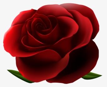 Rosa Vermelha 4.