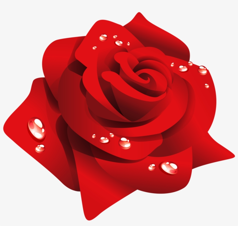Rosas Vermelhas Vetor Png.