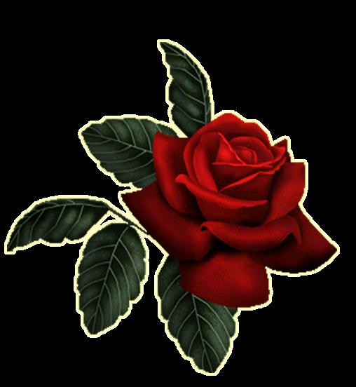 Blindada por Deus: Alfabeto Rosa Vermelha PNG.