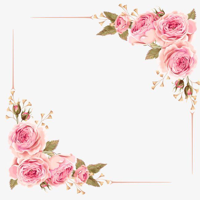 Rose Frontera, Rose, Rosas Rosadas, Frame Archivo PNG y PSD.