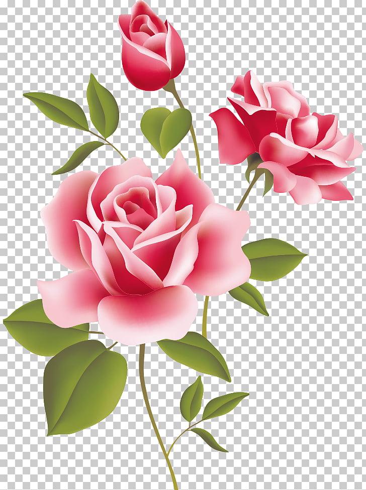Naturaleza muerta: escritorio rosas rosadas, rosa. PNG.