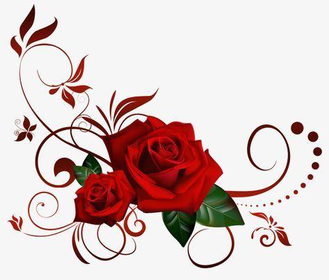 Decoração De Rosas Vermelhas, Vermelho, Rosa, O Material.