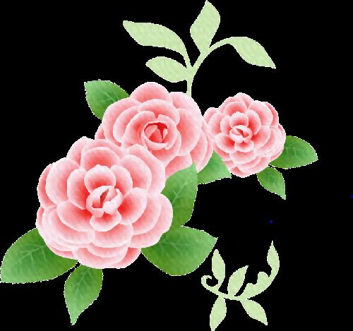 Scrap rosas vintage.