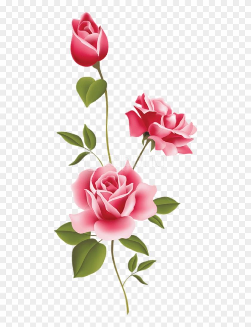 Free Png Pink Rose Art Png Images Transparent.