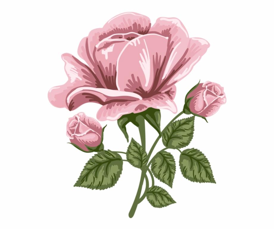 Rose Art Png.