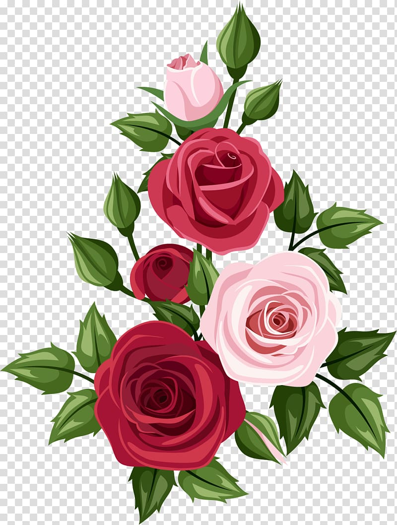 Rose Art Drawing , rose transparent background PNG clipart.