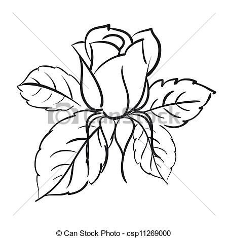Rose blooms clipart #20