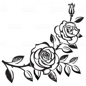 Border Design Flower Rose Drawing — VACA.