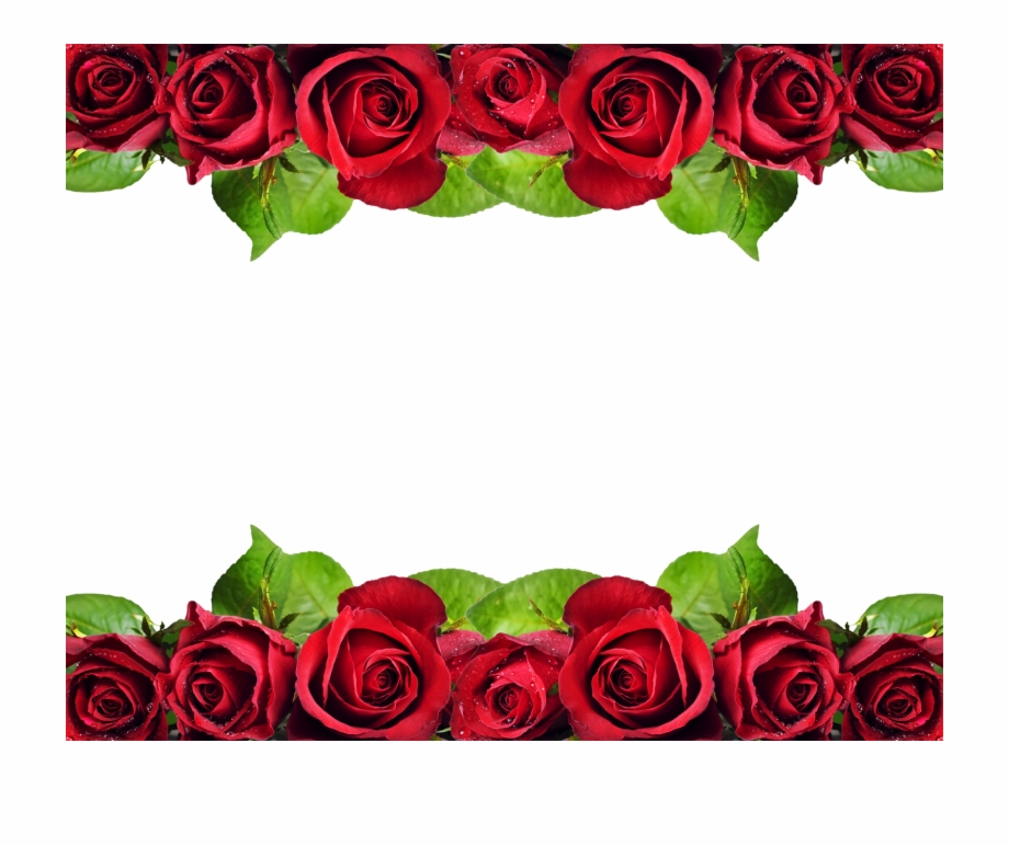 Red Roses Border Png.