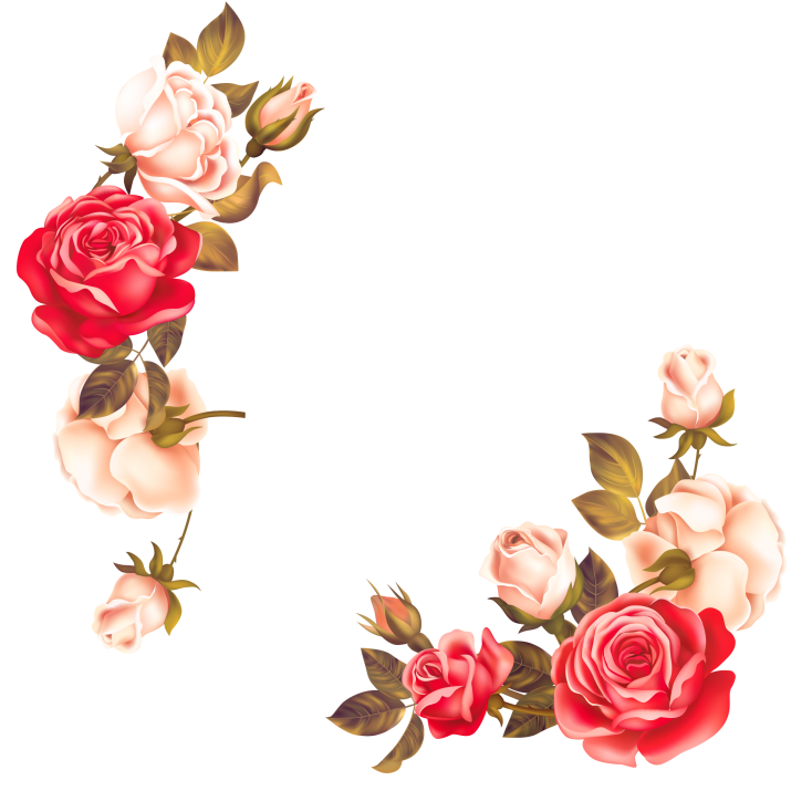 Rose Flowers Border PNG Image Free Download searchpng.com.