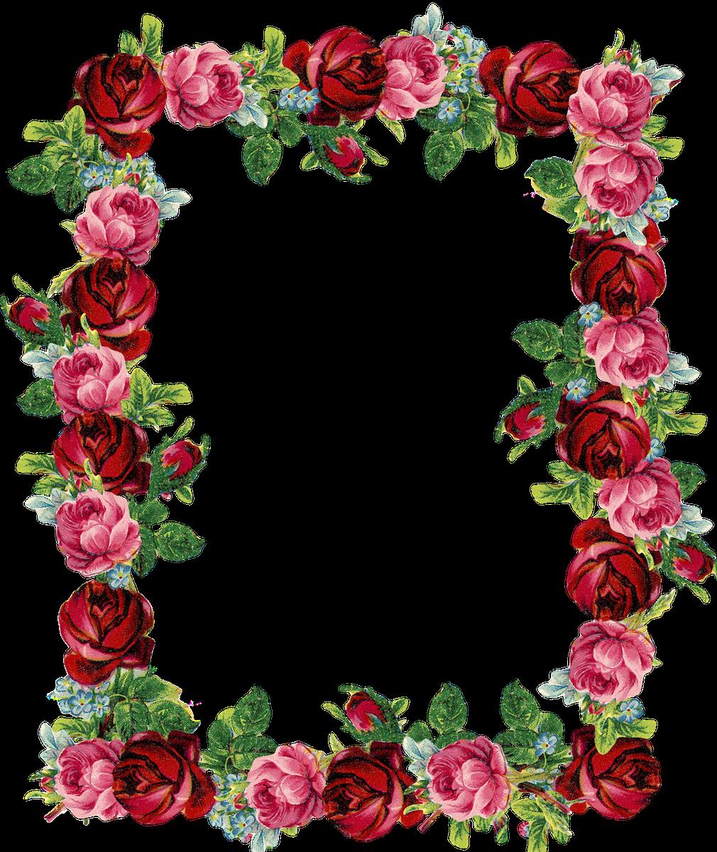 Free digital vintage rose frame and border png.