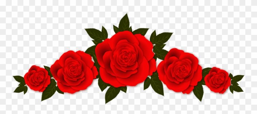 Roses Flowers Vignette &183 Free Image On Pixabay.