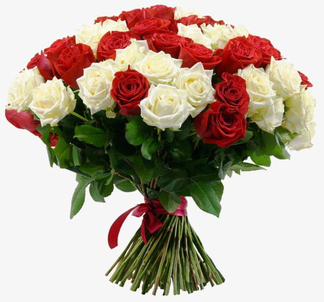 White Rose And Red Rose Bouquet PNG, Clipart, Bouquet.