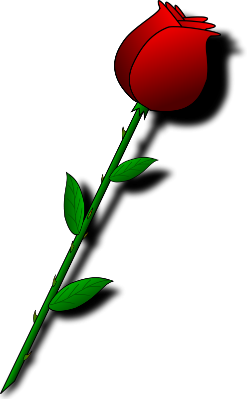 Rose bud clipart » Clipart Station.