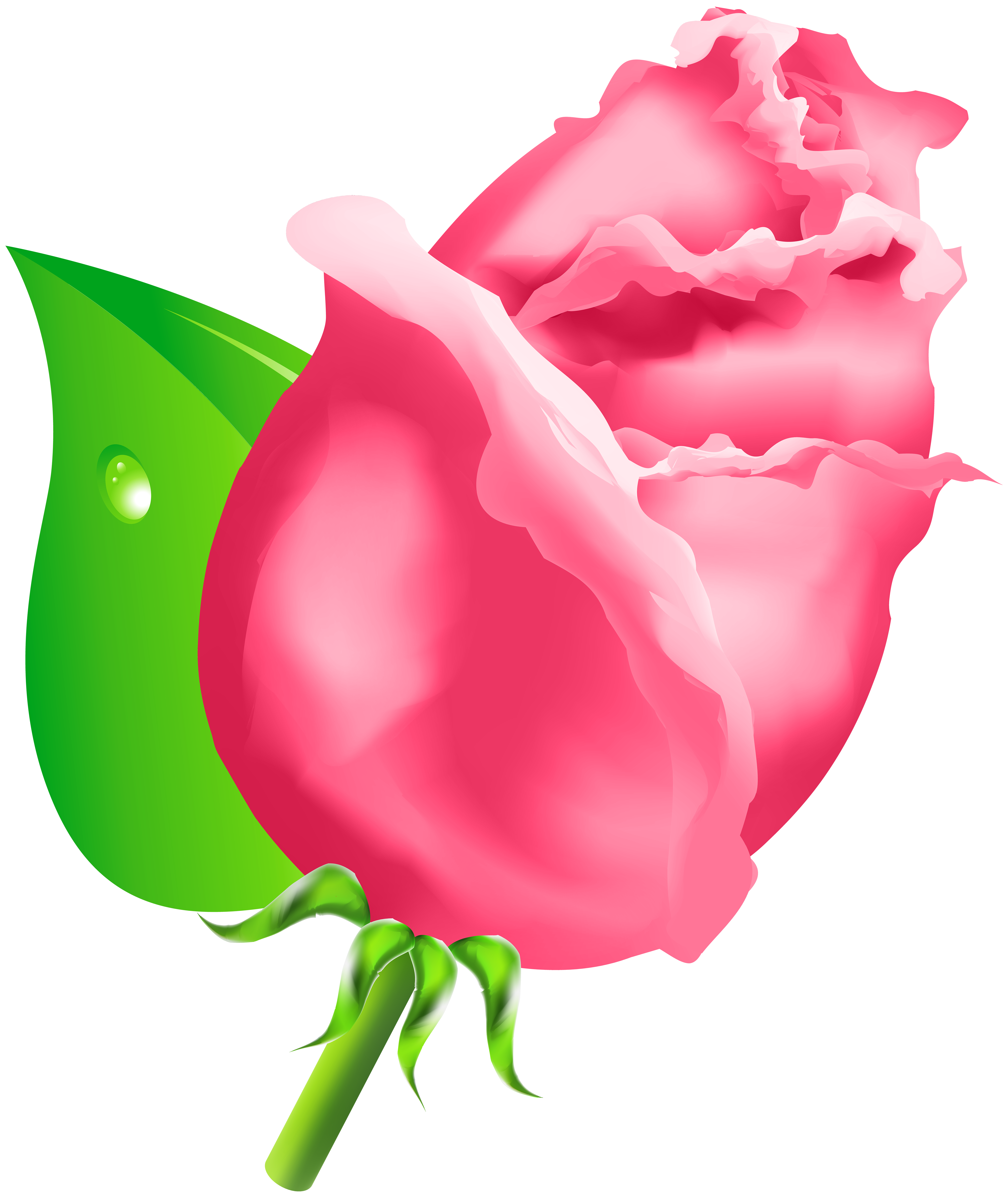 Rose Bud PNG Clipart.