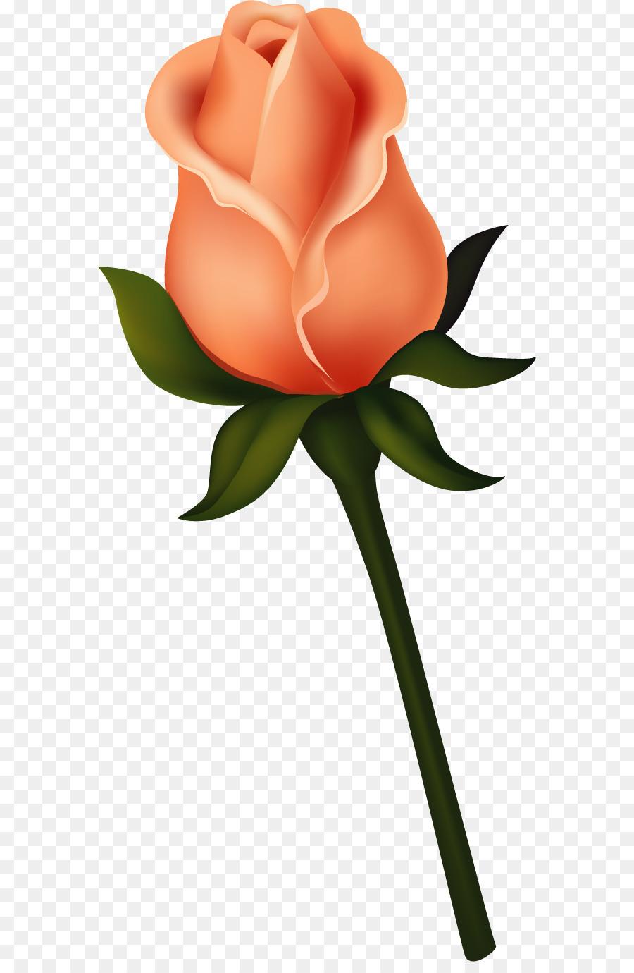 Black rose Bud Clip art.