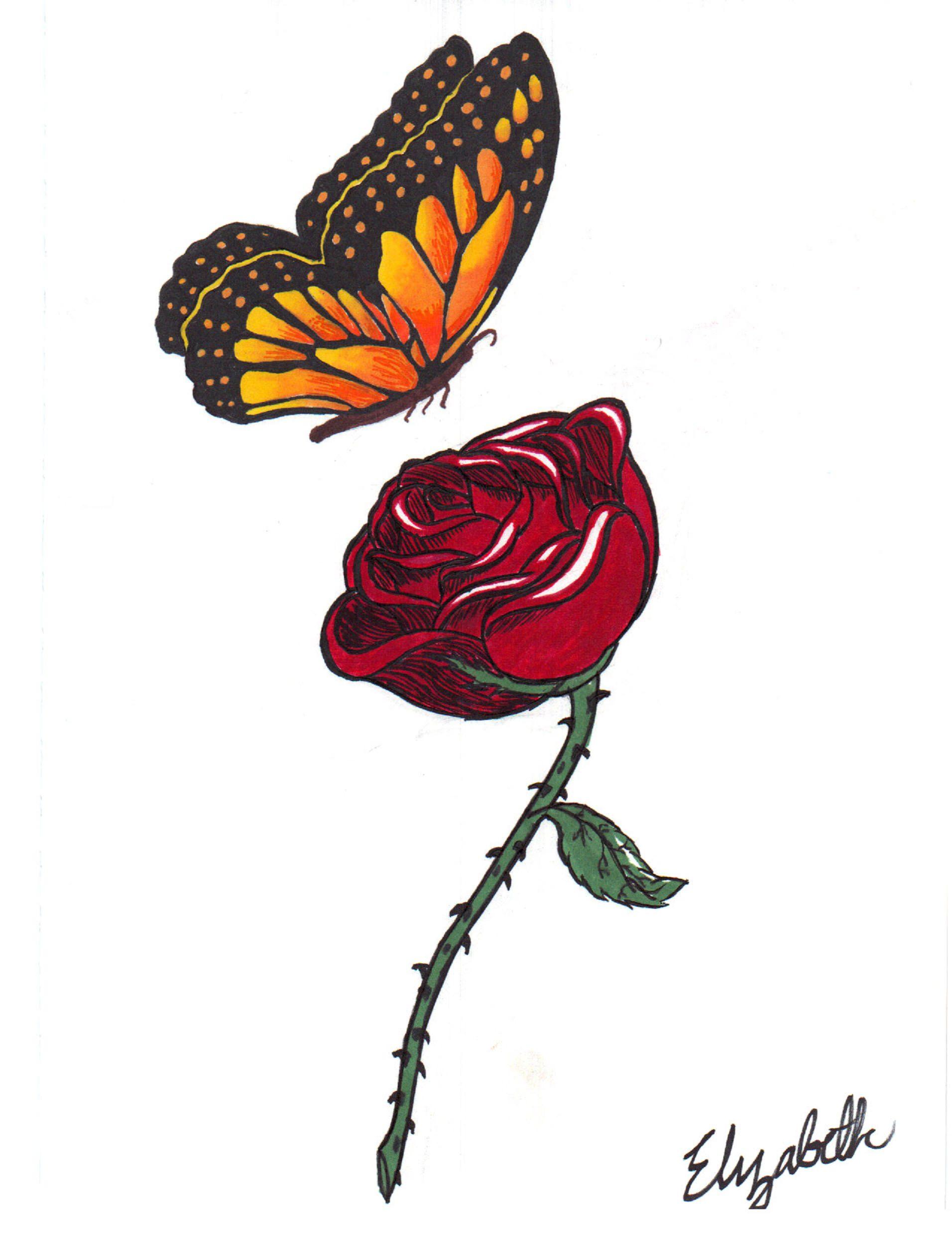 18+ Butterfly Drawings, Art Ideas.