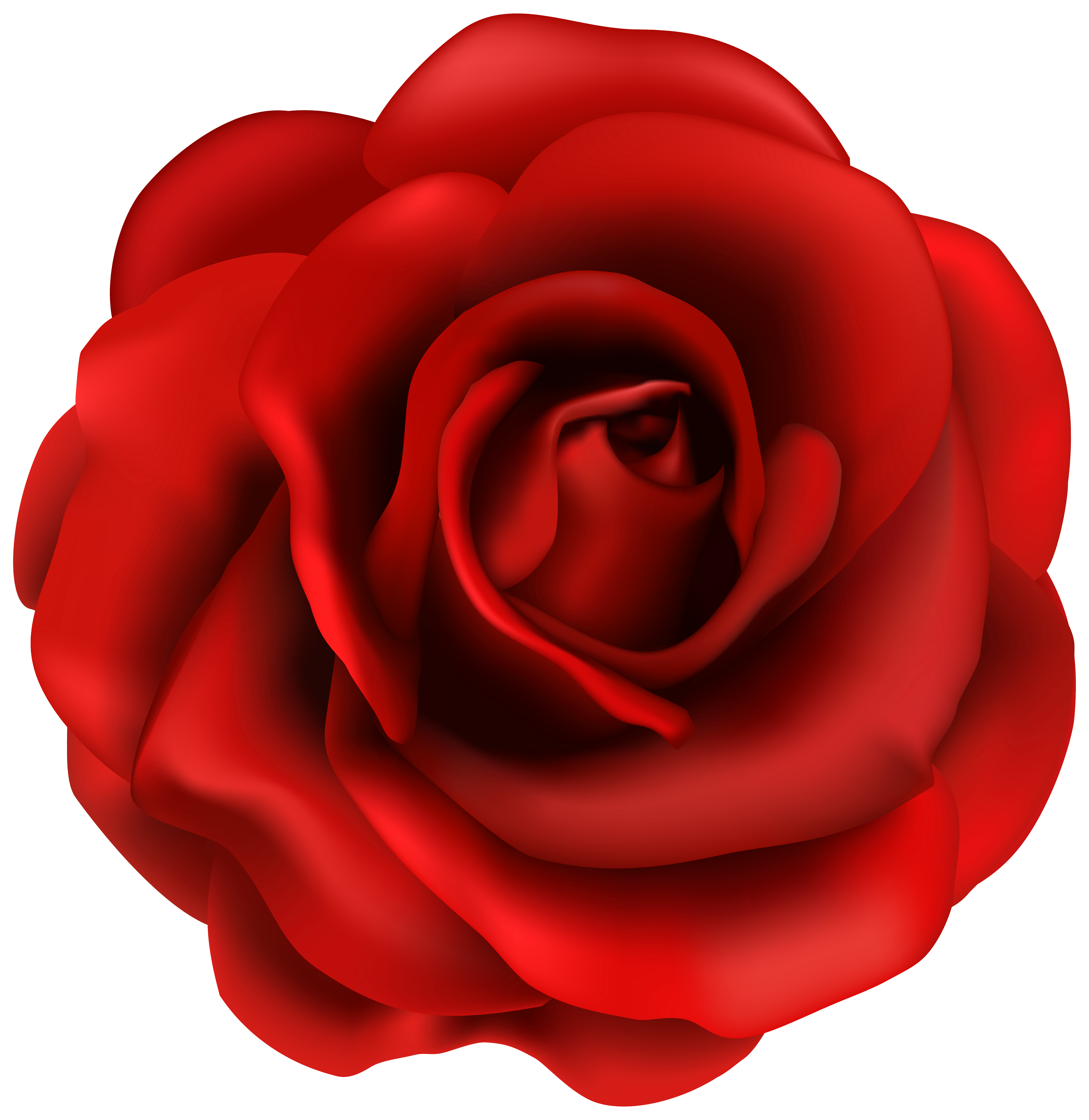 Red Rose Flower PNG Clipart Image.