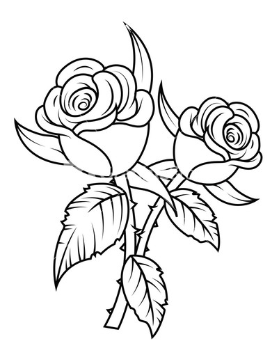 Rose clipart black white pencil and in color rose.