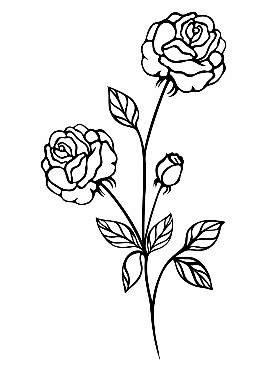 Rose Black And White Clip Art Flowers Roses.