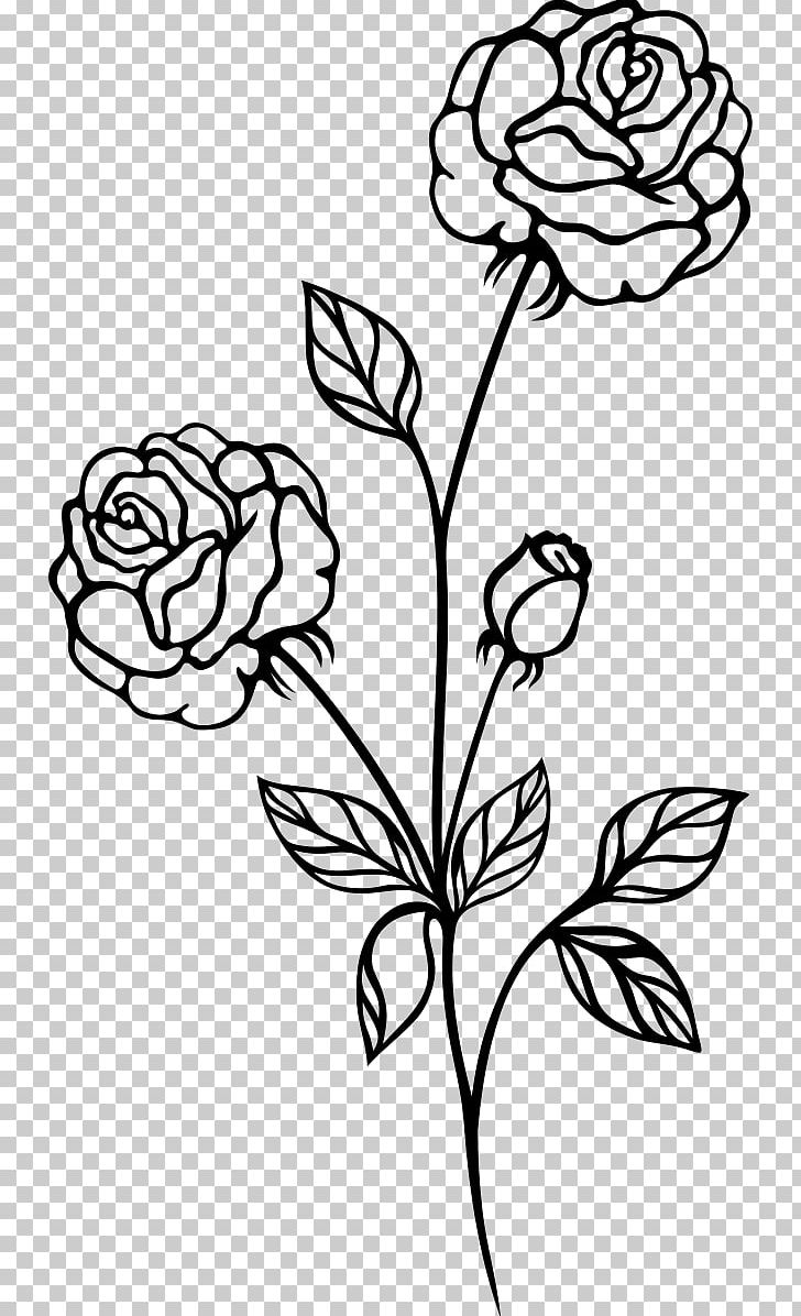 Black Rose Black And White PNG, Clipart, Black, Black And.