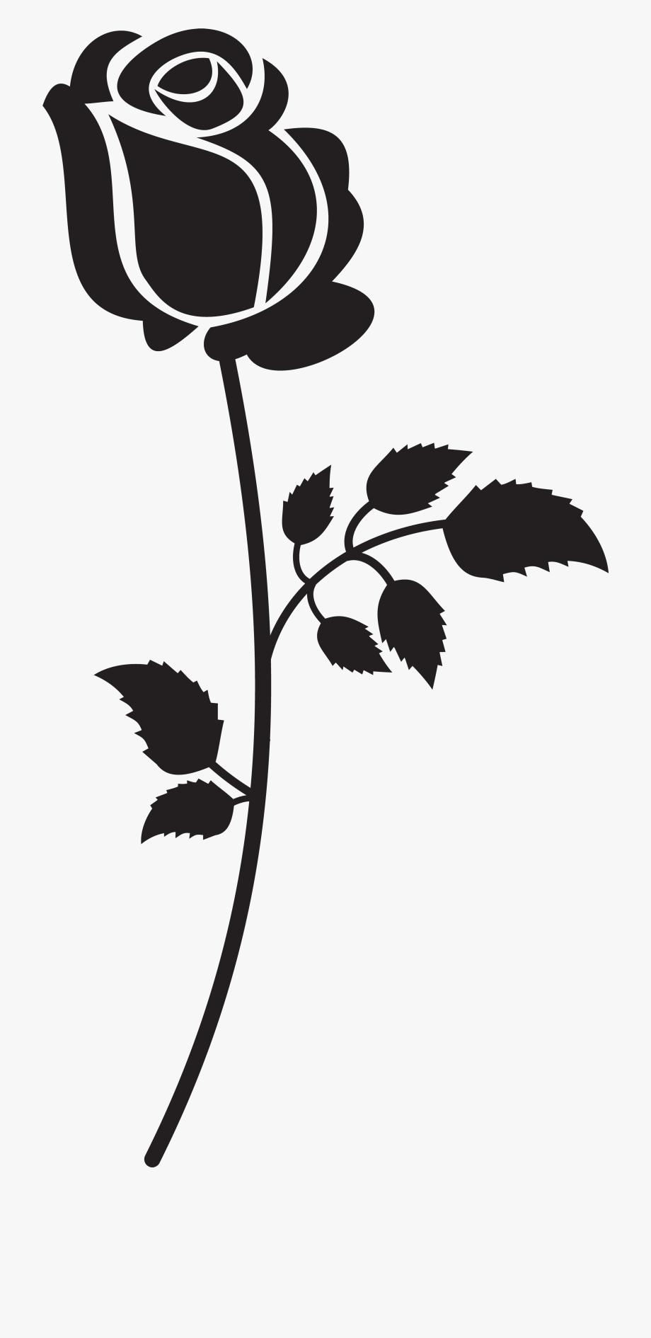 Long Stem Roses Clipart.