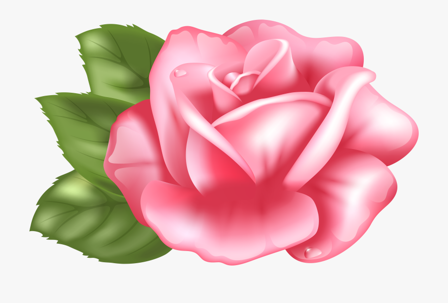 Rose Garden Clipart Free Download Best Rose Garden.