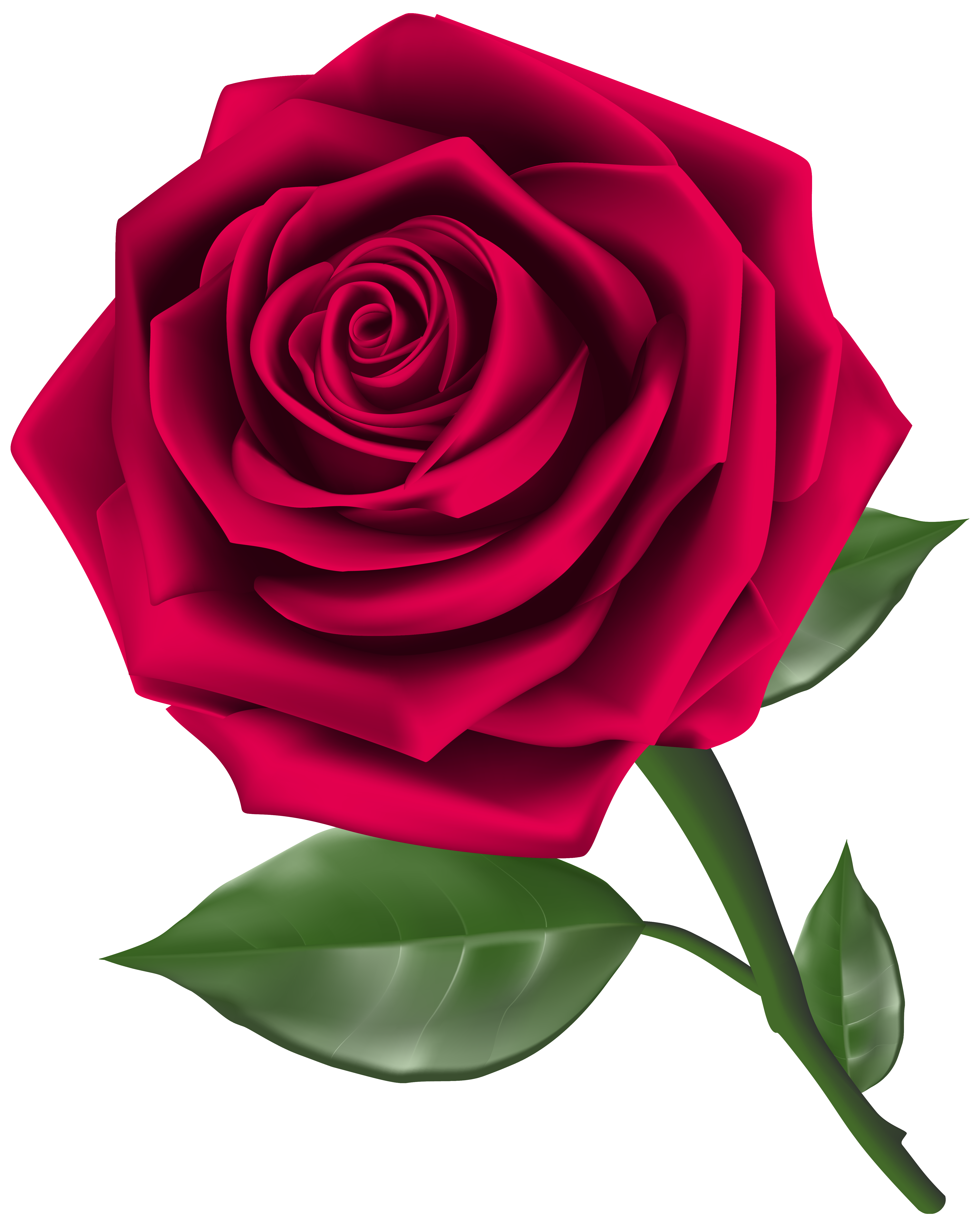 Steam Rose Clipart PNG Image.
