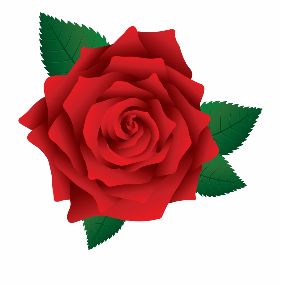 Rose Clipart Png.