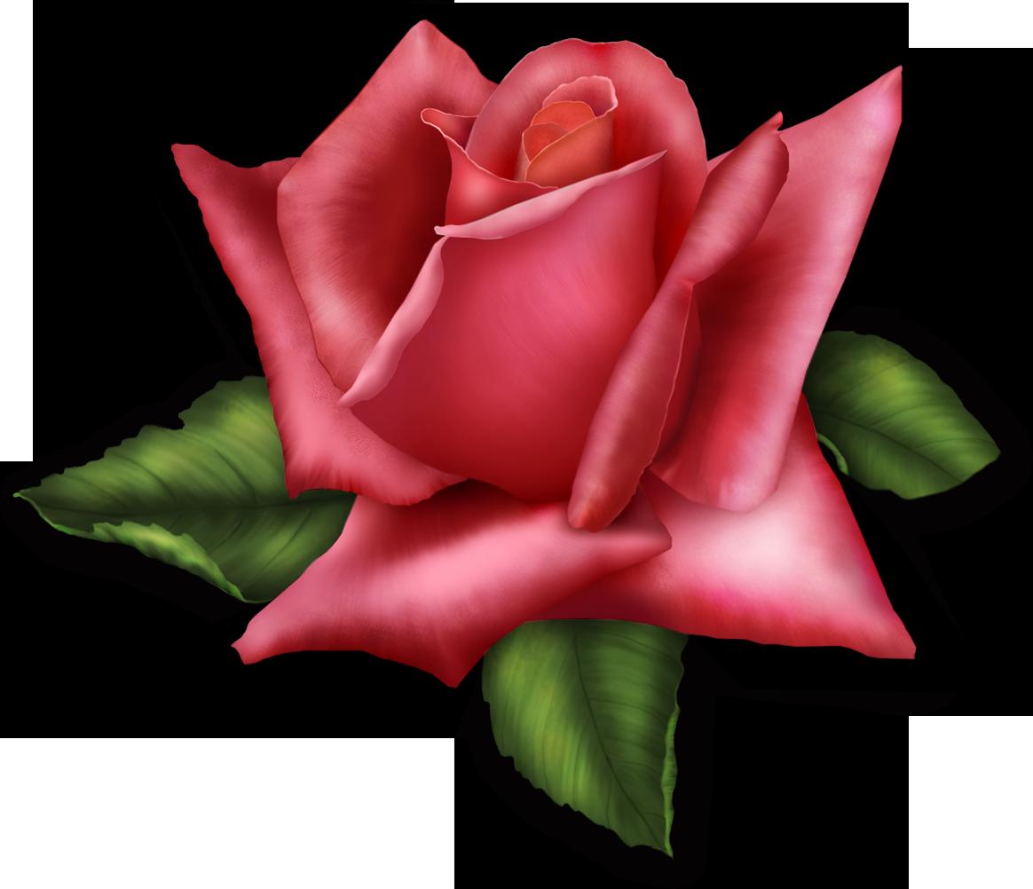 Large Transparent Rose Element.