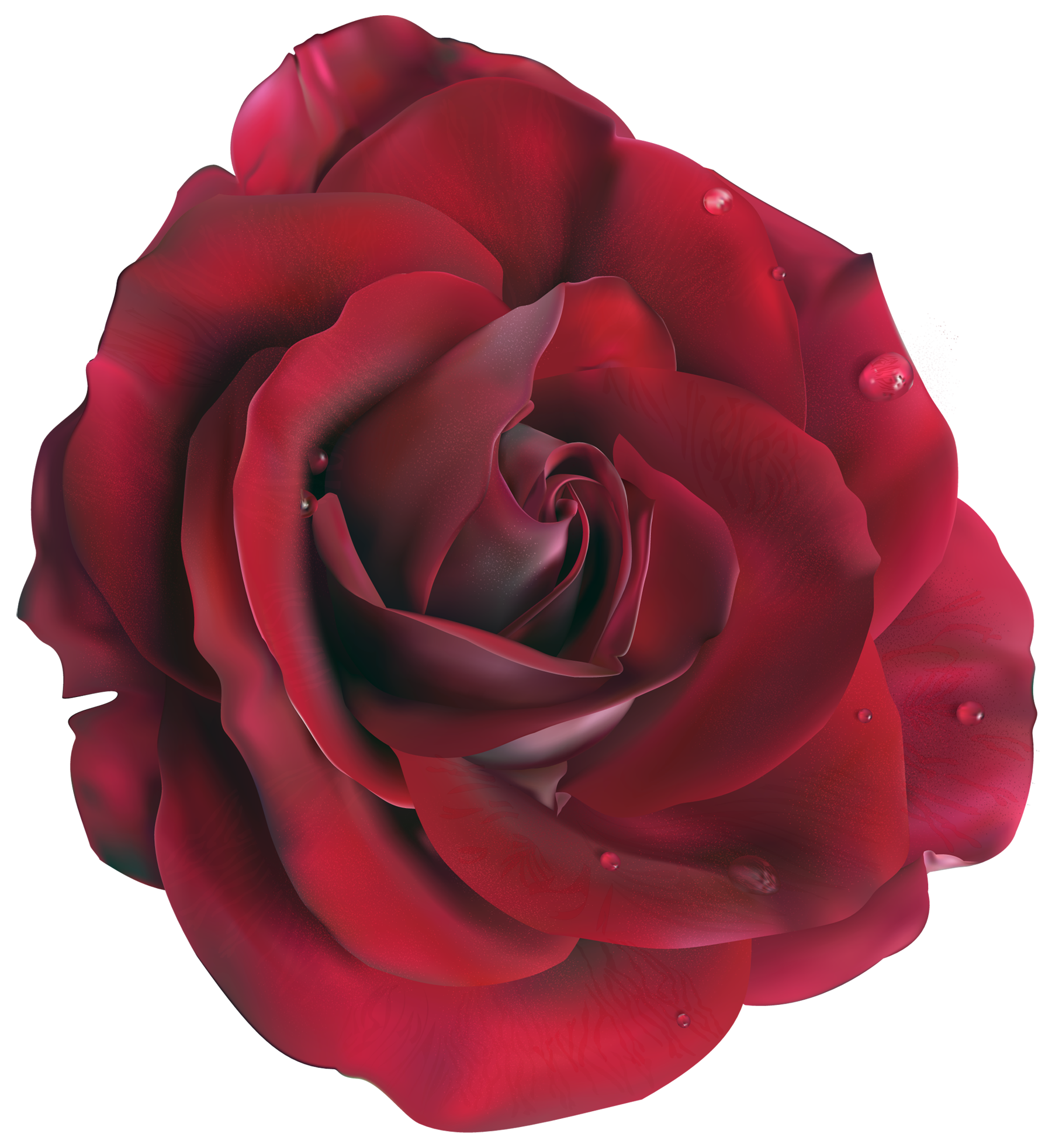Red_Large_Rose_Clipart_Picture.png?m=1374271200.