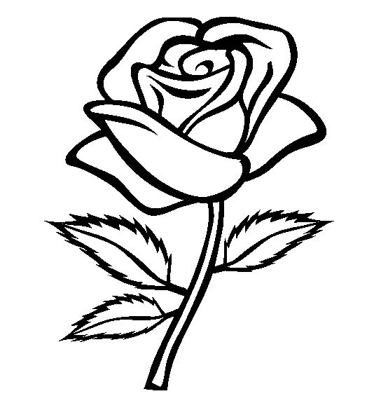 Roses clipart to color.