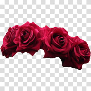 Rose Crown transparent background PNG cliparts free download.