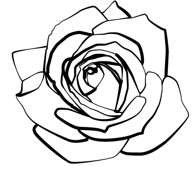 Free Line Drawing Of A Rose, Download Free Clip Art, Free.